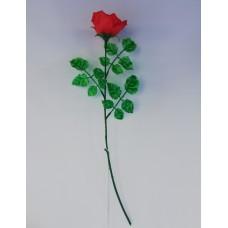 Роза одиночная пл